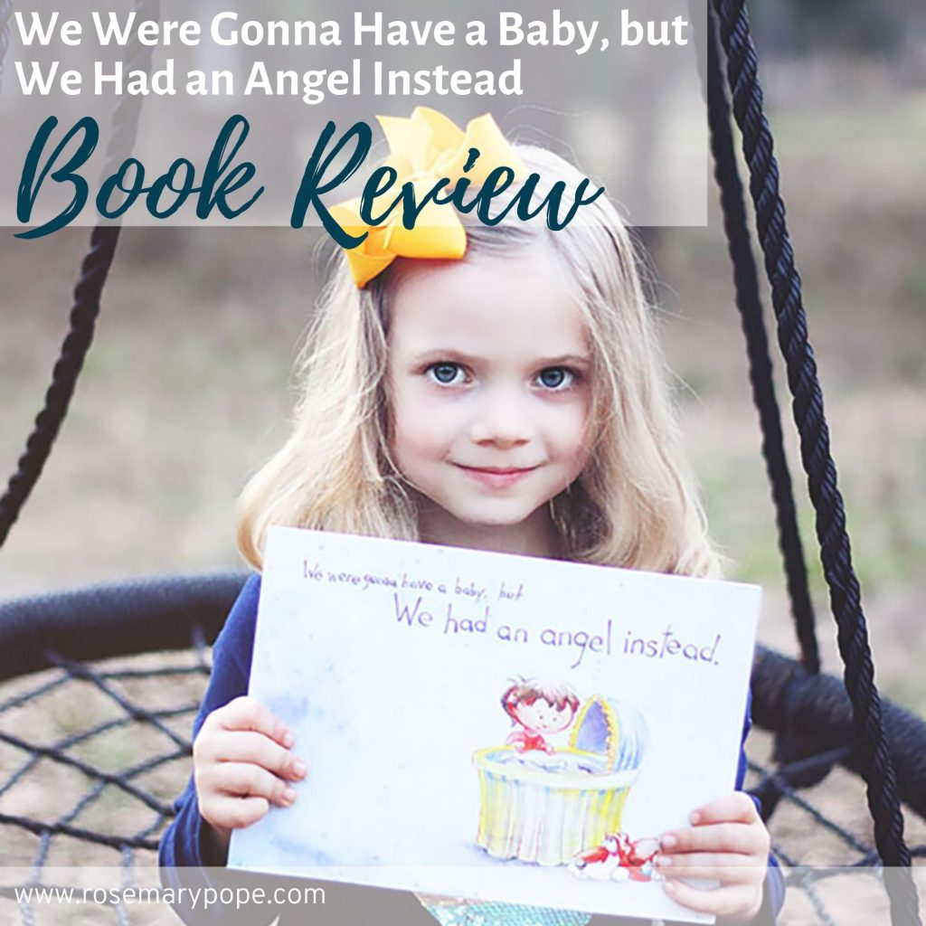 we were gonna have a baby but we had an angel instead book review